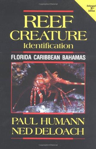 Reef Creature Identification: Florida, Caribbean, Bahamas