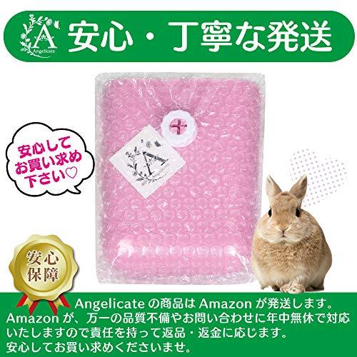 【Angelicate】うさぎ餌入れ固定2個セットエサ皿餌箱小動物ハムスターチンチラモルモット(ピンク)