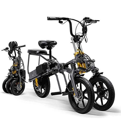 CHA Bicicleta eléctrica Plegable 350W 2 baterías de Bicicletas de montaña 1 Segundo de Gama Alta Plegable Triciclo para Mujer/Hombre,Without Battery Charger