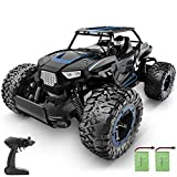 BEZGAR 18 Blue Toy Grade 1:14 Scale Remote Control Car, 2WD High Speed 20 Km/h All Terrains Electric Toy Off Road RC Vehicle Truck Crawler with Two Rechargeable Batteries for Boys Kids and Adults