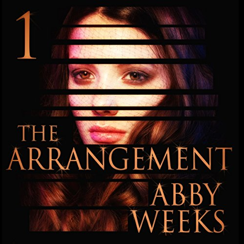 The Arrangement 1 audiobook cover art