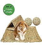 Natural Sea Grass Pet Mats & Balls   Safe & Edible...