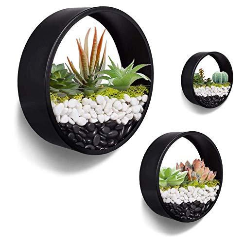 Ecosides Maceta de pared suculenta,2 en 1soporte de maceta de flores de cristal recipiente de metal redondo vertical para colgar plantas de aire,cactus decor de pared para bar, sala de estar, cocina