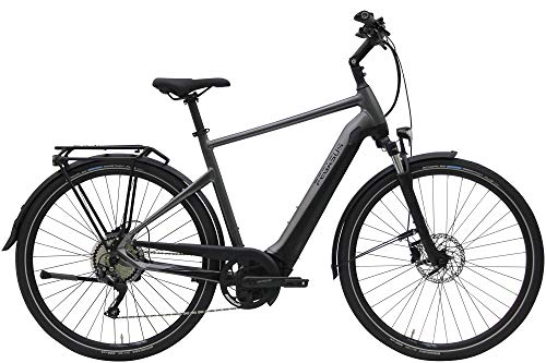 ZEG Pegasus Premio Evo 10 Lite Herren E-Bike Pedelec 2020, Rahmenhöhe:55 cm, Farbe:grau, Kapazität Akku:625 Wh