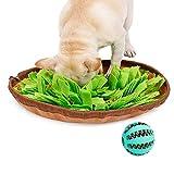 EONAZE Sniffing Tappeto per Cani Tappetino Olfattivo Cane Lavabile Feeding Mat Sniffing Pad Giocattolo di Intelligenza per Esercizio Mentale Allenamento Relax (Una Giocattolo Cane Palla in più)