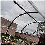 Lonas Transparente Impermeable, Lonas Plástico Pvc Con Ojales, Para Ventana Balcón Techo, Sin Empalmes, El Tamaño Se Puede Personalizar, 400 G / M²(Talla:2M×3M)