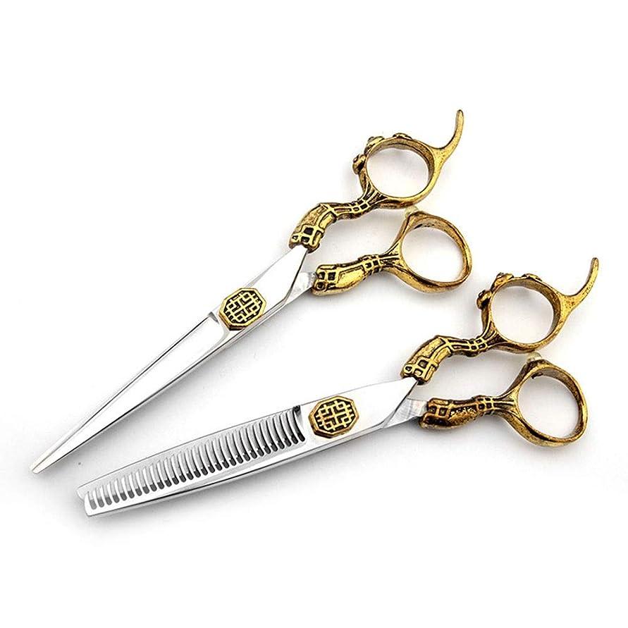 故意の知り合い墓地Goodsok-jp 6インチの美容院の専門のヘアカットの金の贅沢で平らなはさみの歯のせん断セット (色 : ゴールド)