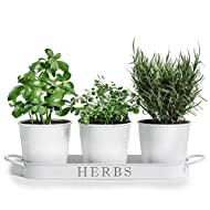 "Barnyard Designs Herb Pot Planter Set with Tray for Indoor Garden or Outdoor Use, Decorative White Metal Succulent Potted Planters for Kitchen Windowsill, (Set of 3, 4.25"" x 4"" Planters on 12.5"" x 4"""