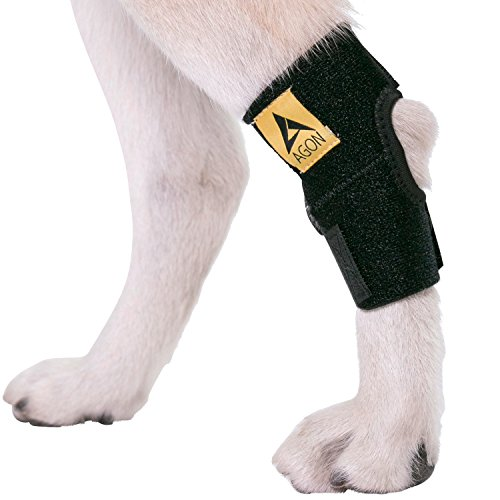 AGON Dog Canine Rear Hock Joint Brace Compression Wrap with Straps Dog for Back Leg Protects Wounds....