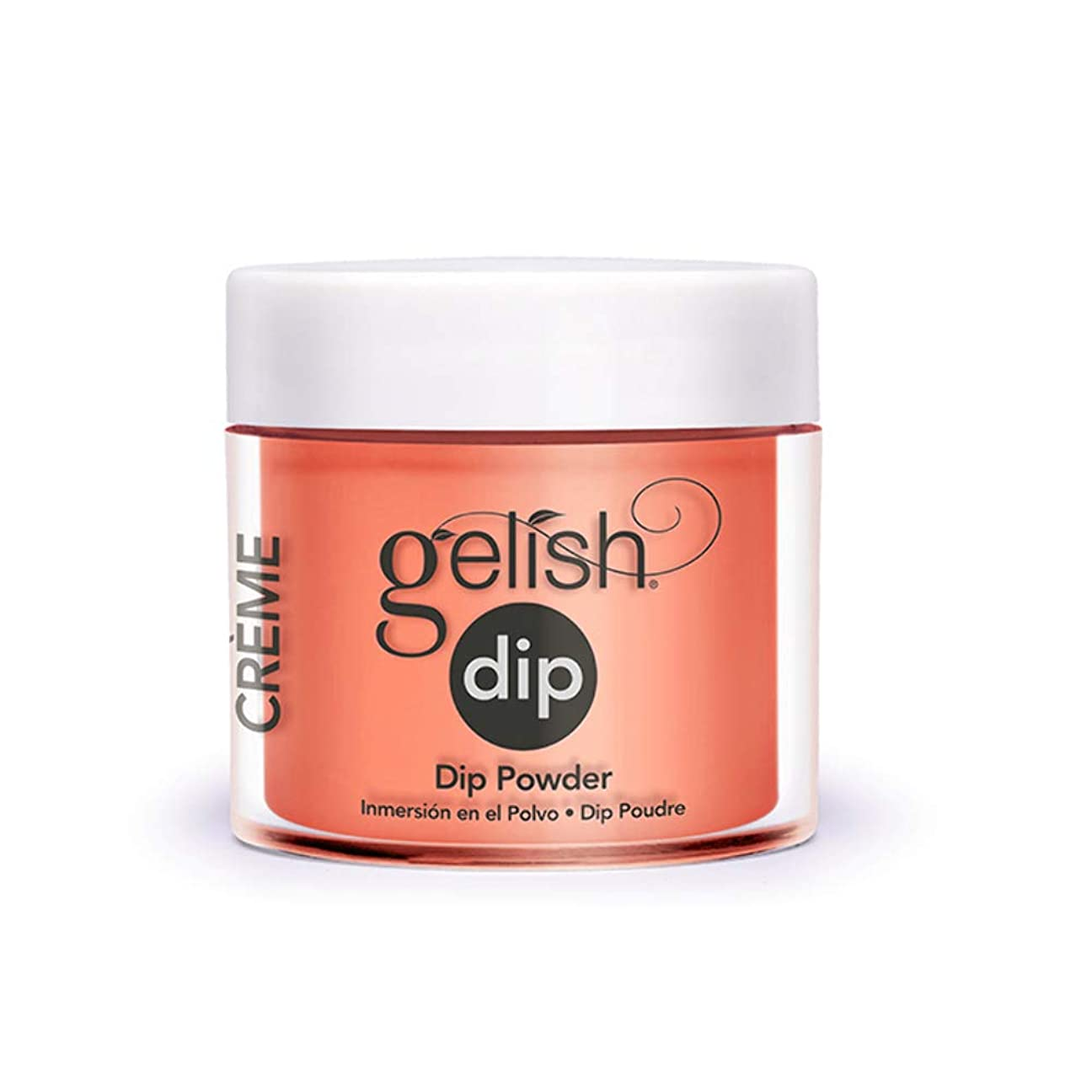 交換特異なホバーHarmony Gelish - Acrylic Dip Powder - Sweet Morning Dew - 23g / 0.8oz