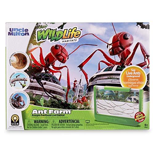 Uncle Milton Ant Farm Antopia Rainforest Ant Habitat - Observe Live Ants - Nature Learning Toy Green