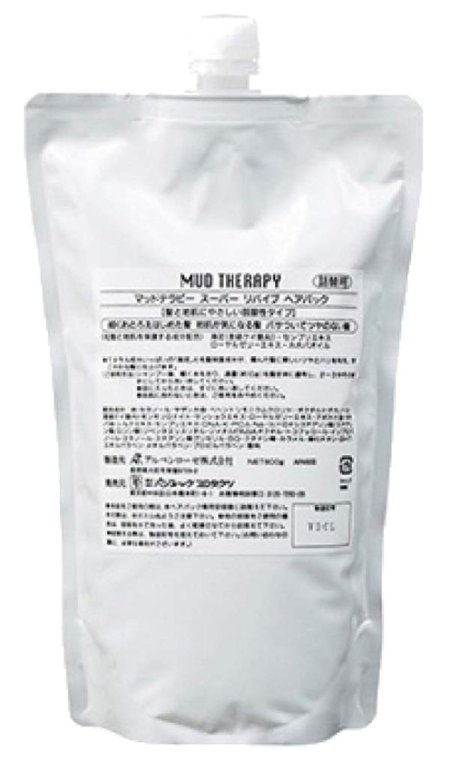 【2本セット】海泥 マッドテラピー スーパーリバイブ ヘアパック Q10 800g 詰替