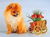 Perro mascota DIY mosaico diamante bordado perro Cruz diamante pintura Animal imagen de diamantes de imitación Kit de bordado de diamantes A3 45x60cm