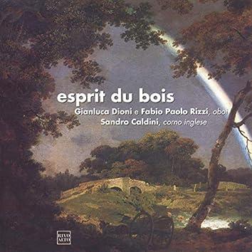 Esprit du bois (Krommer, Vogt, Caldini)