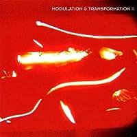 Modulation & Transformation 2