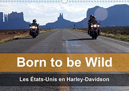 Born to be wild - Les États-Unis en Harley-Davidson (Calendrier mural 2020 DIN A3 horizontal): Les magnifiques paysages du Sud-Ouest américain vus de ... mensuel, 14 Pages ) (Calvendo Mobilite)