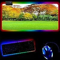 木の風景 RGBゲーミングマウスパッドラージXL拡張LEDコンピューターラップトップキーボードマウスマットゲーマー用特大ビッグマウスパッド、滑り止めラバーベース耐久性のあるステッチエッジ 40x90x0.4cm
