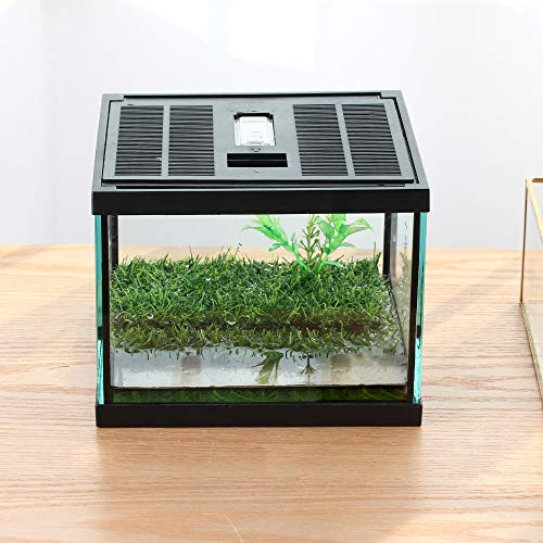 crapelles Pac Frogs Glass Terrarium Feeding kit Tank, Waterproof,for Small Amphibians, Insect, Horned Frogs. Waterweed / Prairie Style Habitat,with Green Artificial Turf Pad, (excluding Animals)