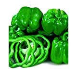 Park Seed California Wonder Organic Pepper Seeds Thick Certified Organic Super Sweet Extra Large Bell Pepper California