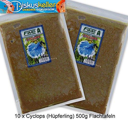 Frostfutter Sparpaket 10 x Cyclops (Hüpferling) 500g Flachtafeln Fisch Futter