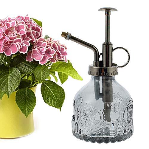 N/U 200 ml Regadera de cristal, pulverizador de cristal, botella retro transparente, botella de spray para riego, regadera pequeña con bomba para flores, plantas, jardín (gris)