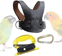 EZ Rider Bird Harness with 8 Ft Leash (Avg. Conure (i.e. Sun Conure))