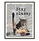 Cat Wall Decor - Cat Wall Art Print - 8x10 Poster Picture, Home or Apartment Photo Decoration - Funny Gift for Cat Lovers, Animal Lovers, Pet Owners, Kitty or Kitten Fans - Unframed