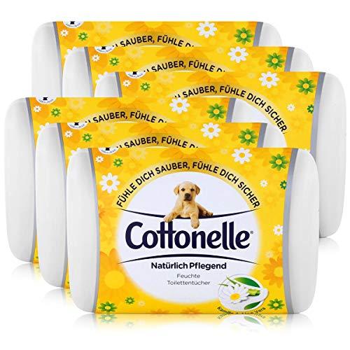6x Hakle Cottonelle feuchte Toilettentücher Kamille & Aloe Vera 42 Tücher, Starterset