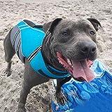 Vivaglory Neuartige Sport Style Ripstop Haustier Hunde-Schwimmweste mit überlegenem Auftrieb und Rettungsgriff - 7