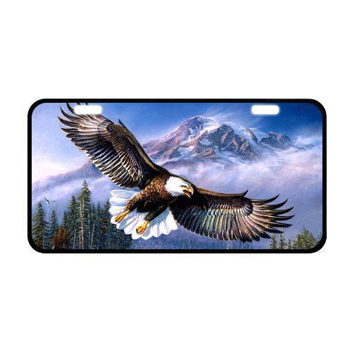 11.8' X 6.1' Durable License Plate, Metal Personalized car tag, American Pride The Bald Eagle Design, Cool Eagle car tag (2 Holes)