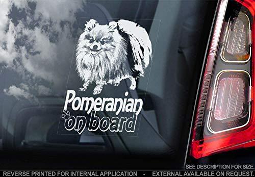 Pomeranian - Autoaufkleber - Hund Schild Fenster, Stoßstange Aufkleber Geschenk - V002 - Weiß/Klar - Interne Rückwärtsgang Aufdruck, 150x100mm