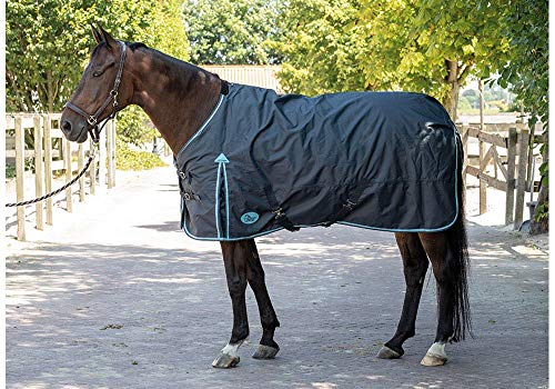 Harry's Horse 32200681–175 cm Couverture Thor 20 g, M, Ebony