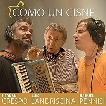 Como un Cisne (feat. Nahuel Pennisi)