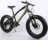 Fat Tire Mens Mountain Bike Snow Bike Beach Bike ATV Bicycle, 20 Inch 7 Speed MTB High-Tensile Carbon Steel Frame, Double Suspension