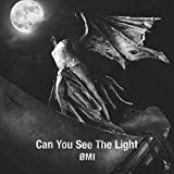 Can You See The Light / OMI