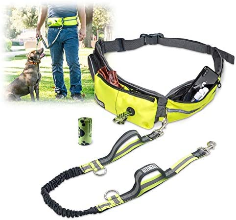 TAKSIN The Ultimate Hands Free Dog Leash for Walking Running Hiking Reflective Leash W Shock product image