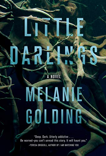 Image of Little Darlings: A Novel