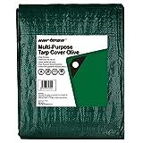 Cartman Poly Tarp Cover Heavy Duty Thick Material, 8 x 10 Feet Multi-Purpose Waterproof, 100GSM Green