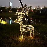 SALCAR 60cm Rentier Weihnachtsdeko Hirsch beleuchtet, LED Lichtschlauch Elch Weihnachten Deko Außen