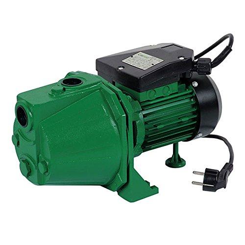 Ribiland - prjet101 - Pompe de surface auto-amorçante 970w