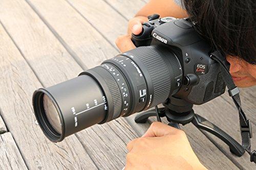 SIGMA望遠ズームレンズ70-300mmF4-5.6DGMACROキヤノン用フルサイズ対応509279