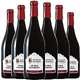 ALBERT BESOMBES Saumur Champigny Vin Rouge Sec AOP 75 cl - Lot de 6