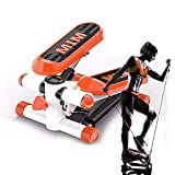 GWLGWL Mini Stepper 2 en 1, Swing Stepper Cardio Fitness Stepper Cardio Fitness aeróbic para Hogar con Pantalla, para Usuarios Principiantes y Avanzados Carga Máxima: 135 Kg