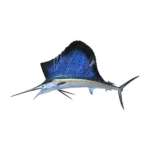 Fish Taxidermy: Amazon com
