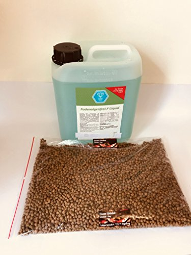 Schönheitsshop Fadenalgenfrei F Liquid 5 L + 1kg Gratis Koifuttermix Algenvernichter Fadenalgenvernichter Fadenalgen Algen Koi Teich