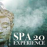 SPA EXPERIENCE 20: Momentos Especiais no Spa, Proporcionar Conforto, Desintoxicar e Revigorar