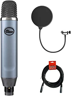 Blue Ember Small Diaphragm Studio Condenser Microphone with XLR-XLR Cable & Pop Filter Bundle