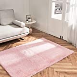 OhGeni Machine Washable Area Rug for Bedroom, Living Room, Dorm Room, Fluffy Soft Faux Fur Rugs Non-Slip Floor Carpet, Kids Nursery Modern Home Decor 4x5.3 Feet Pink