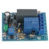 AC 220V Ritardo Timer di Temporizzazione Turn Off Modulo di Spegnimento Temporizzato dell'Interruttore Relè 10A 250V AC/10A 30V DC(Ritardo 0~100 Minuti)