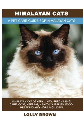 Himalayan Cats: Himalayan Cat Ge...